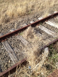 It's been a few years since trains travelled these tracks. No wonder railway sleepers are available!