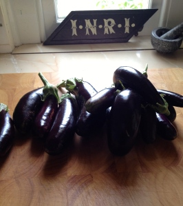 Plentiful glossy lebanese or finger eggplants