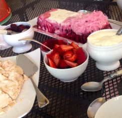 Berry icecream, fresh berries, pavlova and cream - with Persian fairy floss.