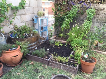 "Previously a troublesome little spot in the corner, now a mini herb garden and ""nursery"" of sorts."
